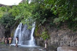 Agasthiyar Falls, Papanasam Waterfall, Tirunelveli