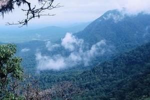 Agumbe near Varanga Lake Basadi