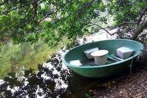 Agumbe Rain Forest trek near Varanga Lake Basadi