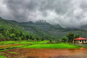 Bhandardara near Umbrella Falls