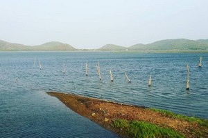 Chilika Lake, Chilka Lake Bird Sanctuary