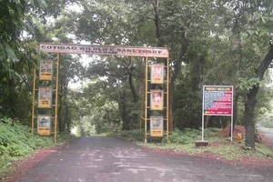 Dandeli Wildlife Sanctuary near Supa Dam