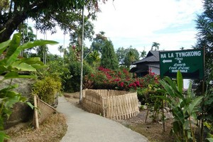 Mawlynnong-Village-Shillong1356.jpg