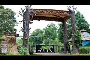 Nagarhole National Park And Tiger Reserve, Rajiv Gandhi National Park, Mysore