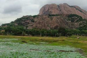 Savandurga near Dodda Alada Mara
