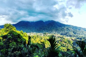 Tura Peak near Cooch Behar Palace
