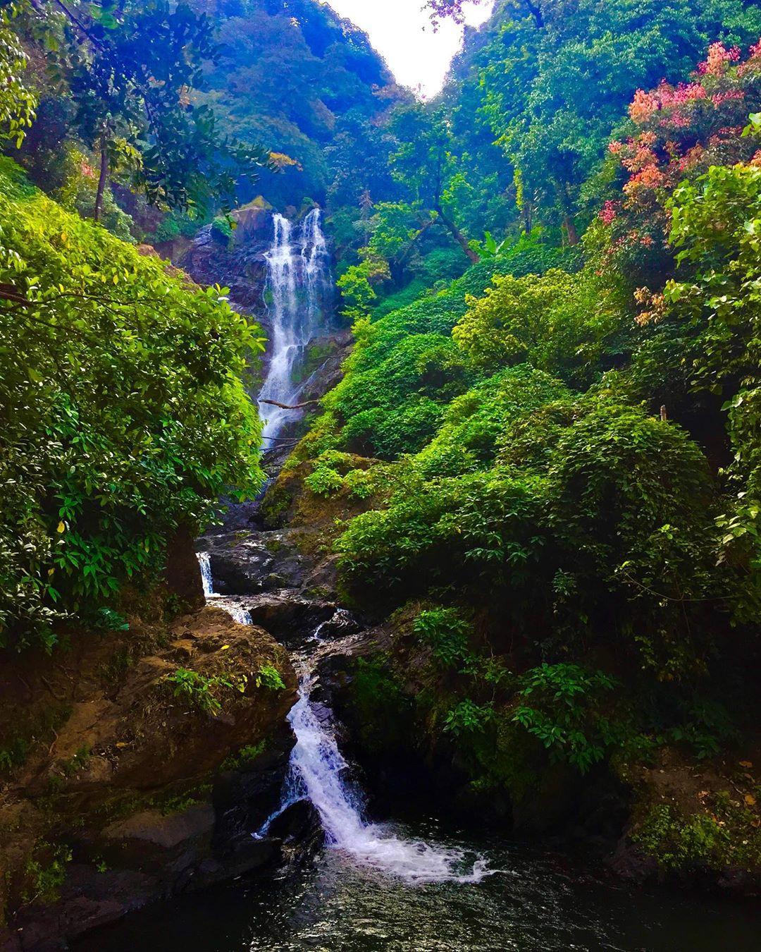 Vibhooti-Falls30278.jpg