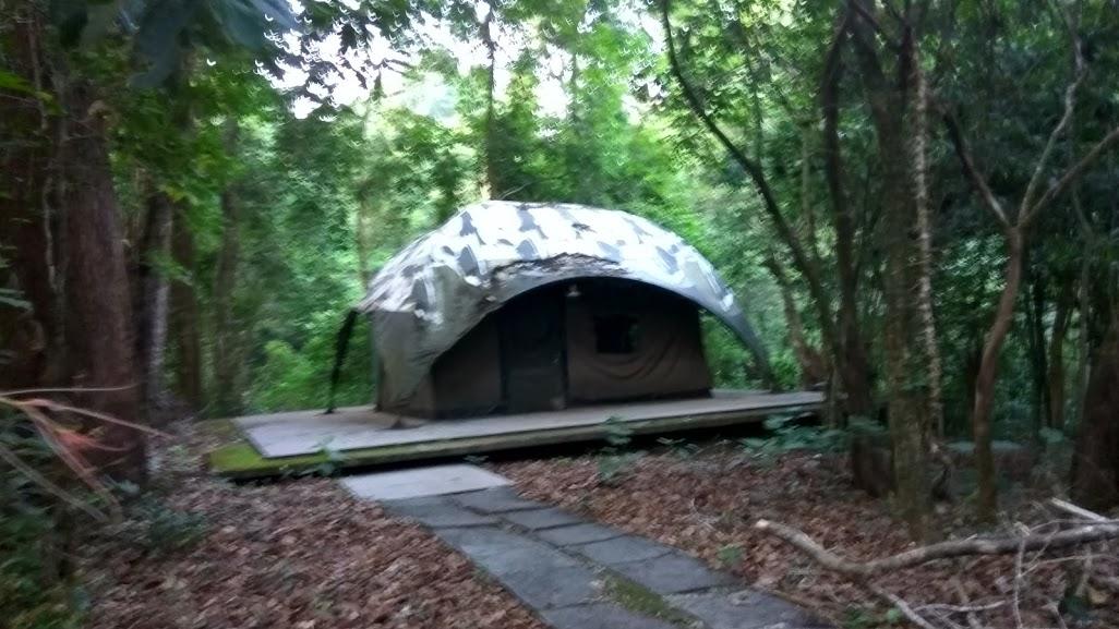 Agumbe Rain Forest trek