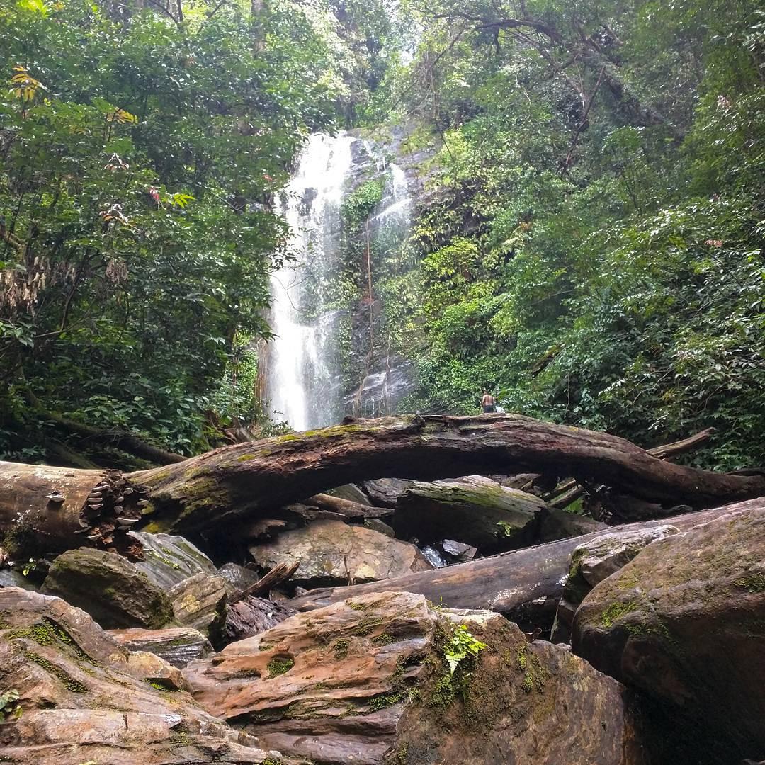 Arishina Gundi Falls
