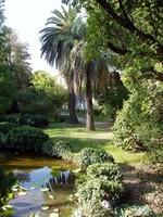 Botanical Gardens Of KUD